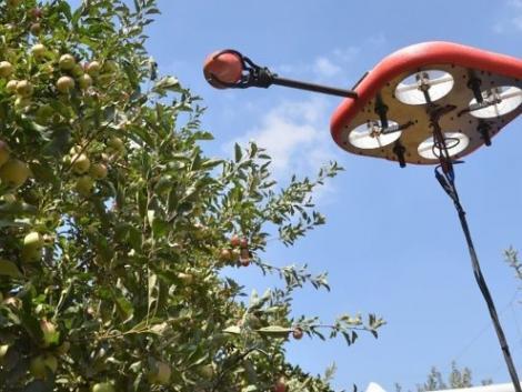Gyümölcsszedő drónba fektet vagyonokat a Kubota