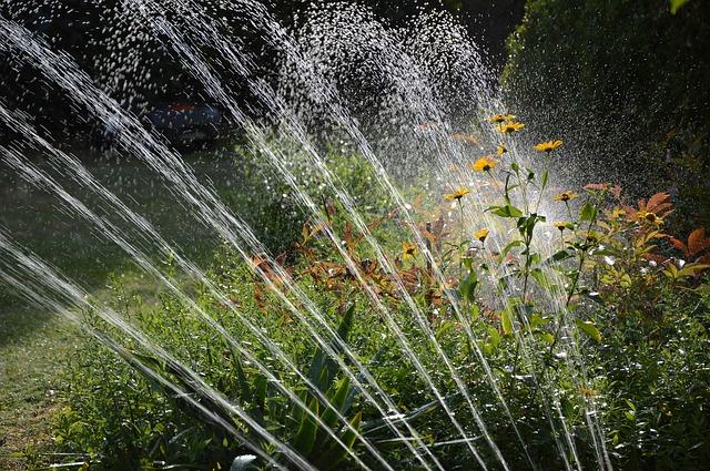 kert öntözése kerti kúttal vagy nélküle