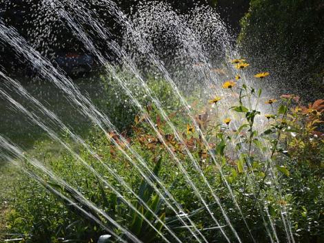 Mivel és hogyan öntözzük kertjeinket?