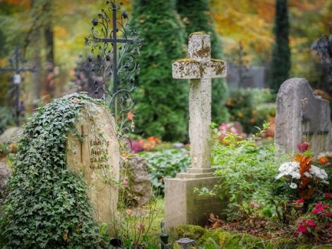 Döbbenetes temetkezési módszer: koporsó helyett komposztálás