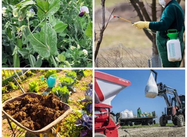 Amit a trágyázásról, lemosó permetezésről, talajjavításról tudni érdemes