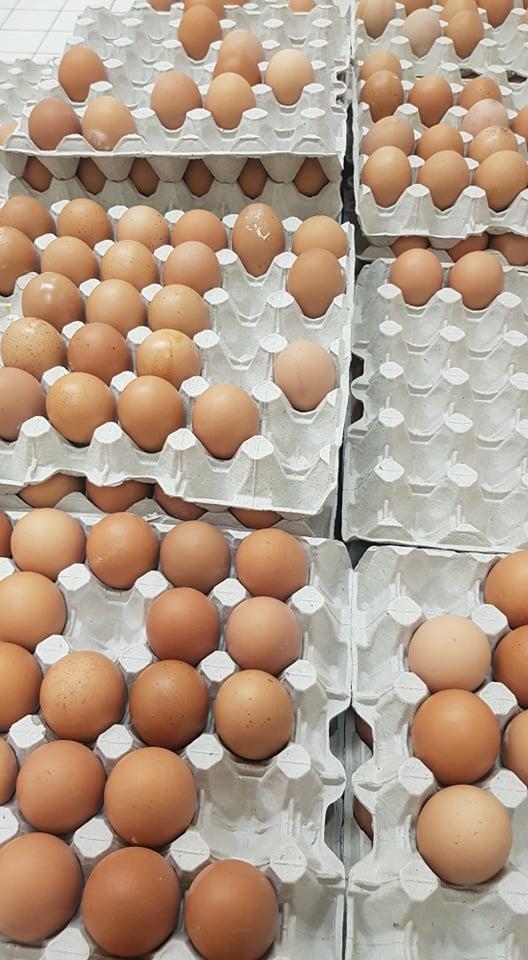 bolti tojás