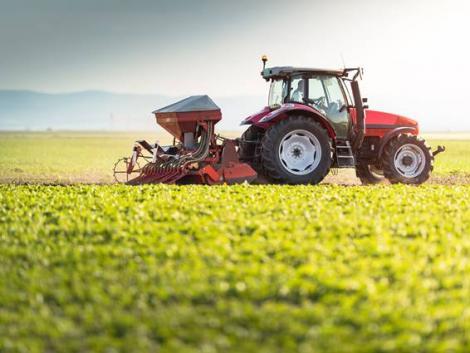 Az EU mezőgazdasági belpiacának védelme magyar szemmel