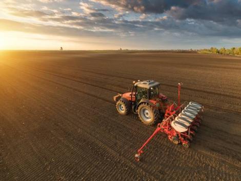 Nem áll le az élet a határban – nyitva lesznek a mezőgazdasági üzletek