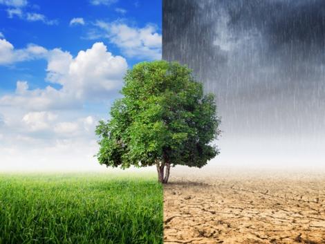 Hogyan hat a járvány a klímaváltozásra?