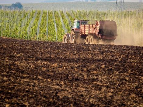 Sorra dőlnek a rekordok – soha nem látott magasságban a termelők költségei