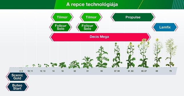 A repce technológiája grafikon