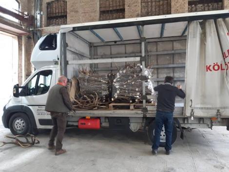 Tíz tonna szarvasagancsból készítik el a vadászati világkiállítás kapuját