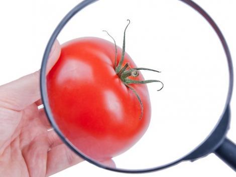 Hogy biztosan növényvédőszer-maradványoktól mentes zöldség és gyümölcs kerüljön a boltokba