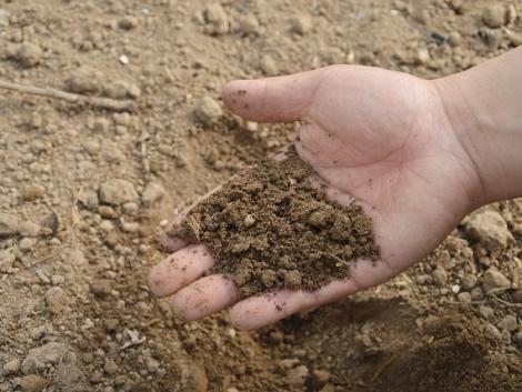 Ásd el a bugyit, és megtudod, milyen a talajod