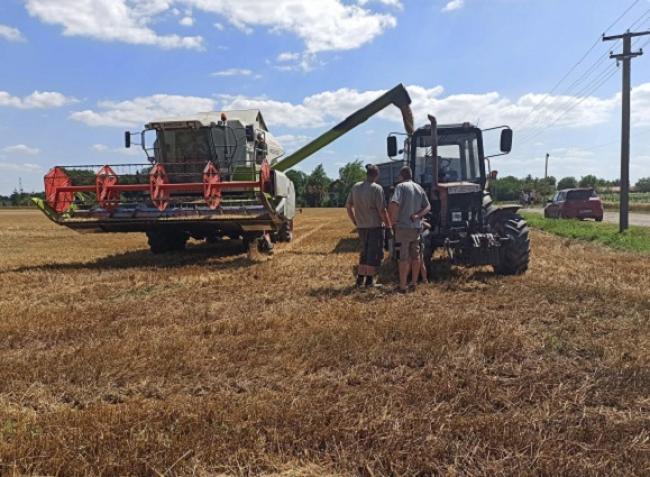 A termelők közel négyötöde tervez agrárpályázaton indulni