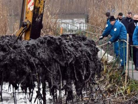 Emberfeletti munka volt megtisztítani a Dunát a brutális olajszennyezéstől – videó