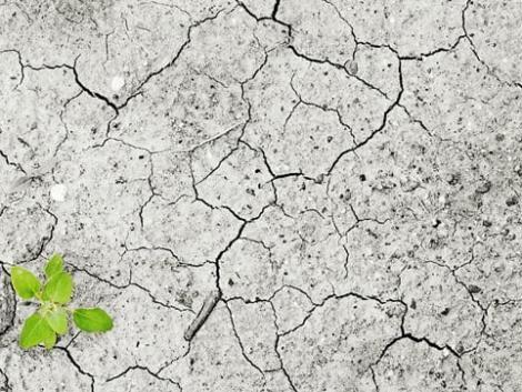 Meg kell felelni a társadalom klímavédelemmel kapcsolatos elvárásainak