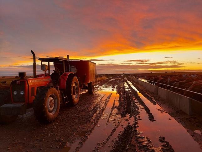 traktor-eső