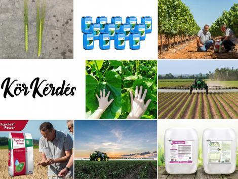 Lombtrágya vagy biostimulátor? Mivel teszünk jobbat a növényeinknek?