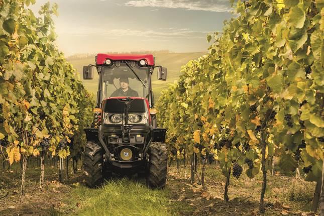 Case IH traktor szőlőben