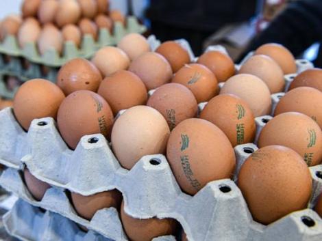 Brutális drágulást jelentettek be: egekbe szökik a tojás ára