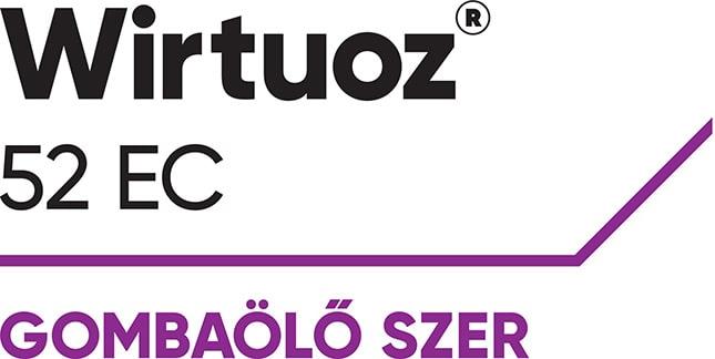 Wirtuoz logo