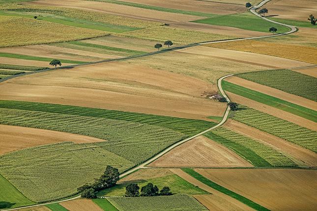 Mezőgazdasági termőföldek