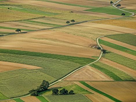 Döbbenet! Németországban akár 1000 euró is lehet 1 hektár földbérleti díja