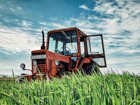 Sorban állnak a gazdák a biztosítóknál – ez a legnépszerűbb konstrukció