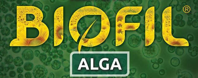 Biofil alga