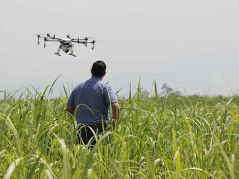 5 éven belül a drónok átvehetik a permetezőgépek szerepét a növényvédelemben