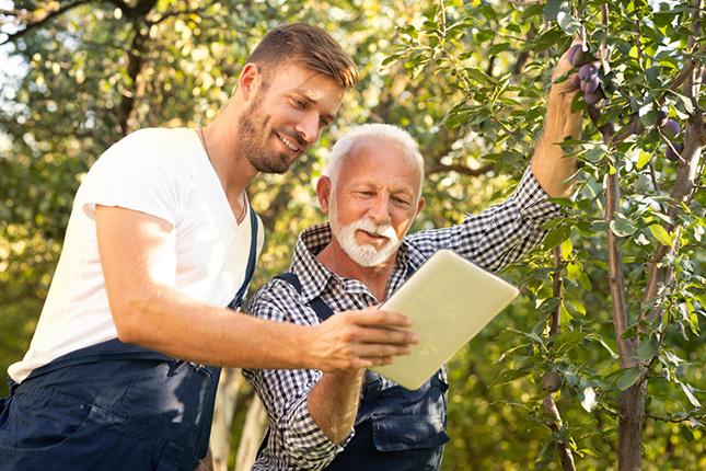 apa és fia a gazdaságban tablettel