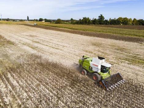 Aranyláz az agráriumban – ez nem szolgálja a gazdák érdekeit