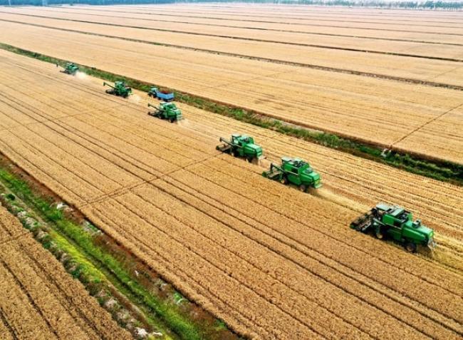 Aktuális mezőgazdasági és vidékfejlesztési pályázatok