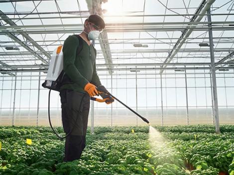 Hogyan permetezz tavasszal a biokertedben?