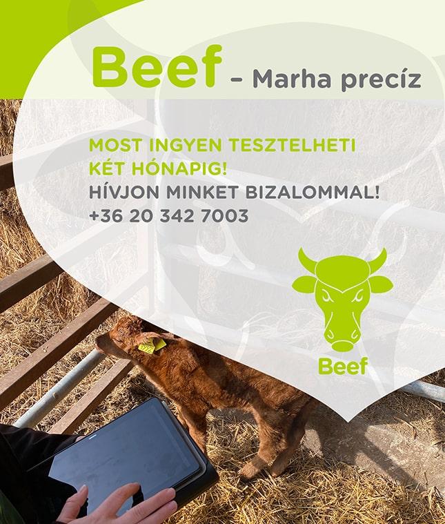 Beef szarvasmarha telepirányítási rendszer