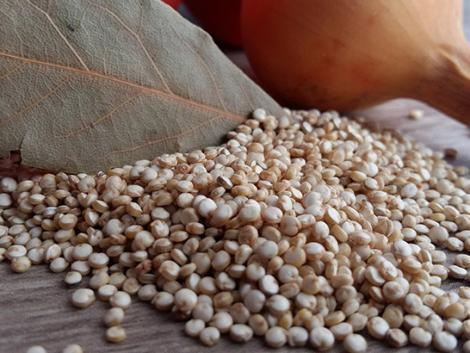Gyatra földeken is sokat hozhat a quinoa termesztése