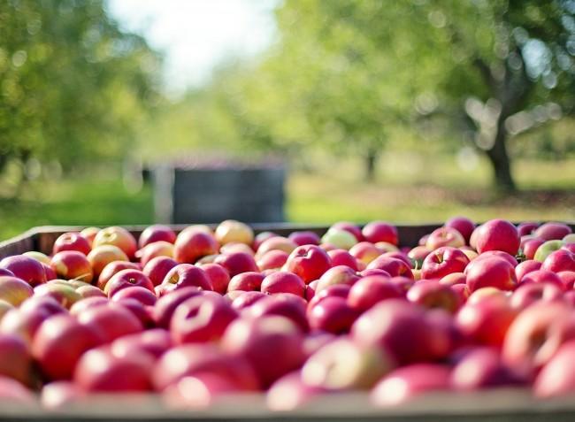 Az egekben a gyümölcsárak