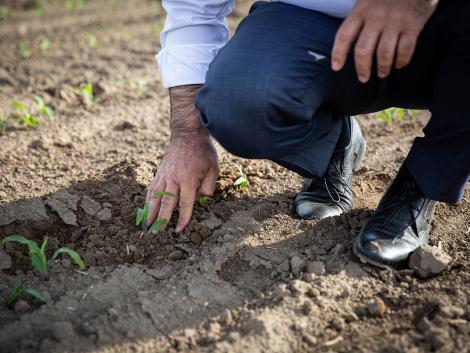 Jól haladnak a vetési munkákkal a gazdák – Videó