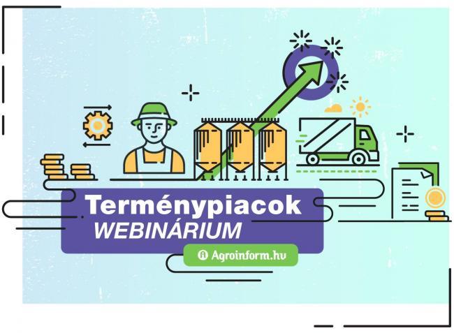 Terménypiacok Webinárium – regisztrálj most!