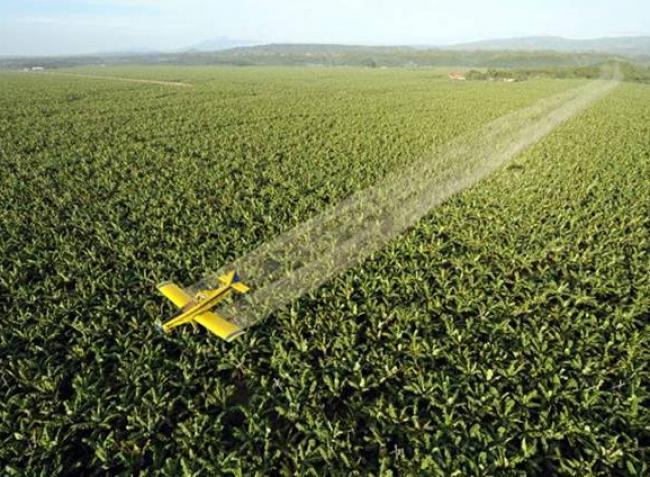A drónok kiütik a repülőket a növényvédelemből?
