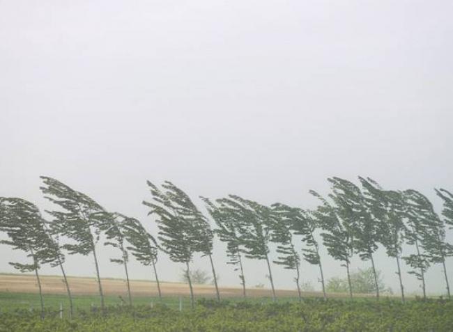 Extrém szélsebesség, hatalmas viharok – erre számíthat Magyarország