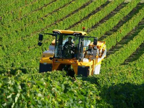 A Gregoire szőlő-betakarítógépek kizárólagos hazai forgalmazója lett az AXIÁL