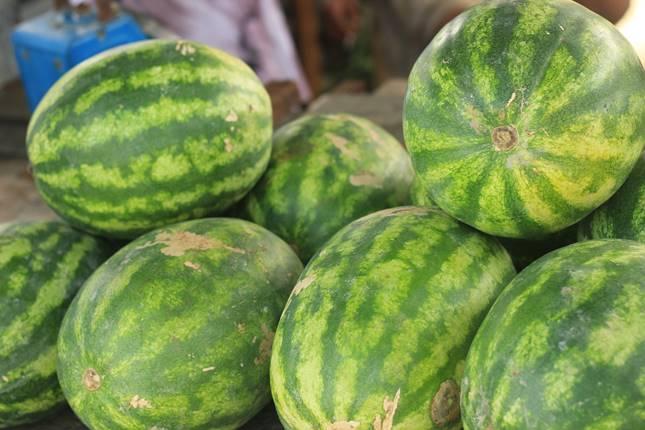 A görögdinnye hasznos a prosztatitishez)