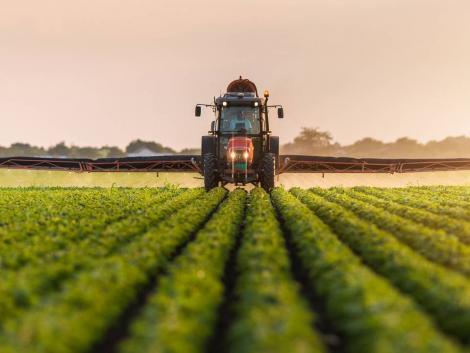 Több határon átívelő projekt köti össze a magyar és a szerb mezőgazdaságot