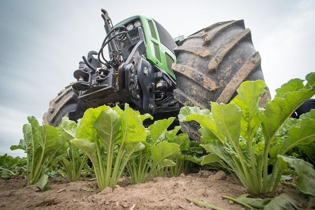 traktor és cukorrépa