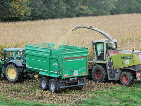 Hatalmas mezőgazdasági integrátori céget alapított a Mészáros Csoport
