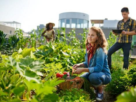 Itt a júniusi feladatlista: ezek a kerti teendők várnak rád