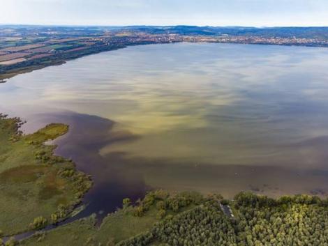 Gyógyszermaradványok a Balatonban – mit tesznek velünk a vízbe jutó hormonok?