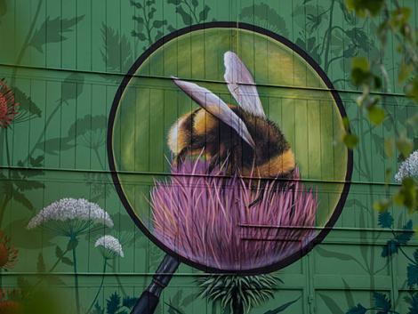 Így is lehet élni: Szeged egy részét visszaadták a méheknek