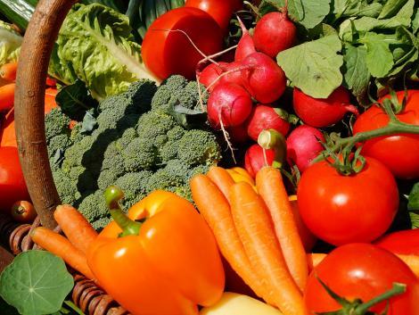 A kukorica ára a plafont verdesi, a gyümölcstermesztőket ez nem vigasztalja