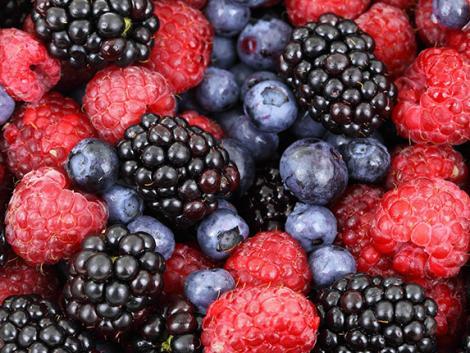 Startol a gyümölcsszezon és itt a Zöldség- és Gyümölcsnap!
