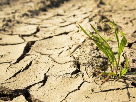 Fokozódó hőség és pontos zivatar-előrejelzés