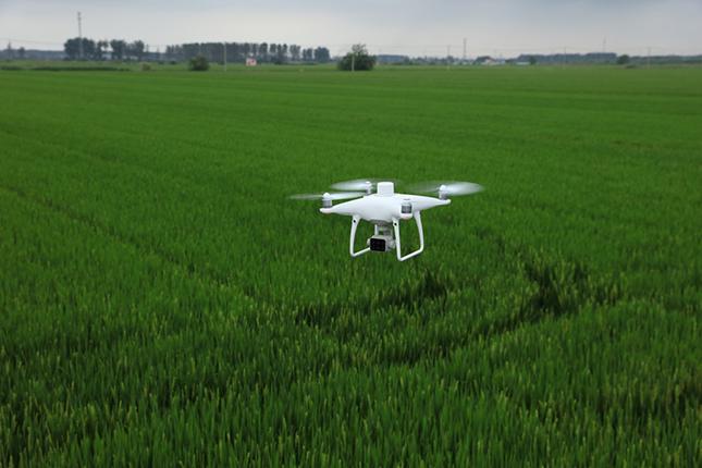 Drón munkában a szántóföld felett